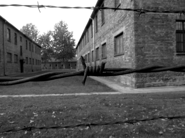 Auschwitz Stacheldraht